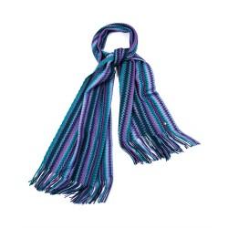 Echarpe Violette Bleu/Violet